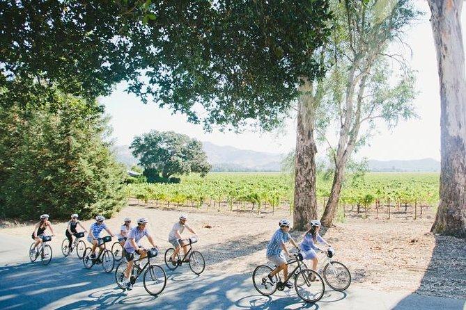 Full-Day Napa Valley Bike + Wine Tour