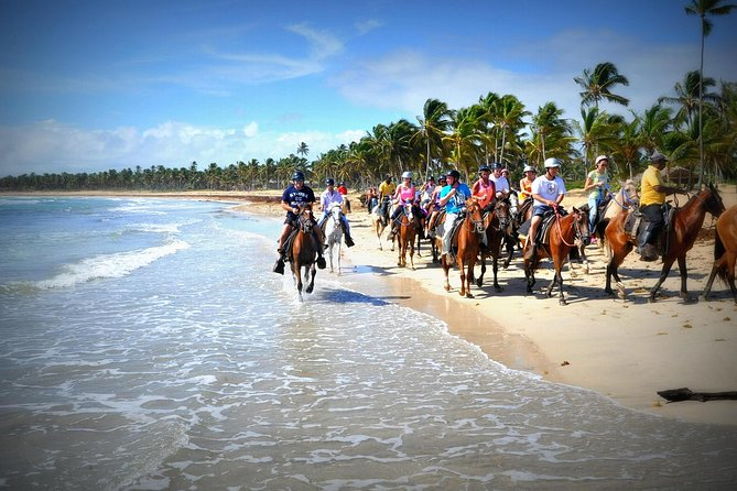 Small-Group Half-Day Horseback Riding Tour from Punta Cana photo 1
