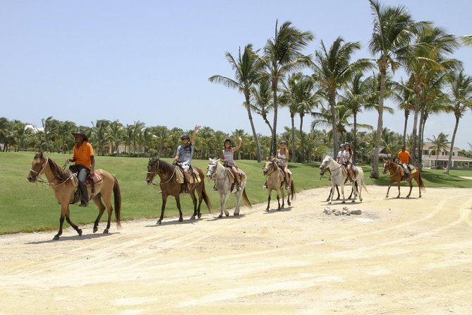 Small-Group Half-Day Horseback Riding Tour from Punta Cana photo 3