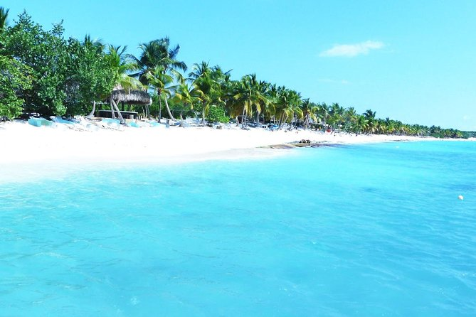 Saona Island Day Trip And Snorkeling from Punta cana