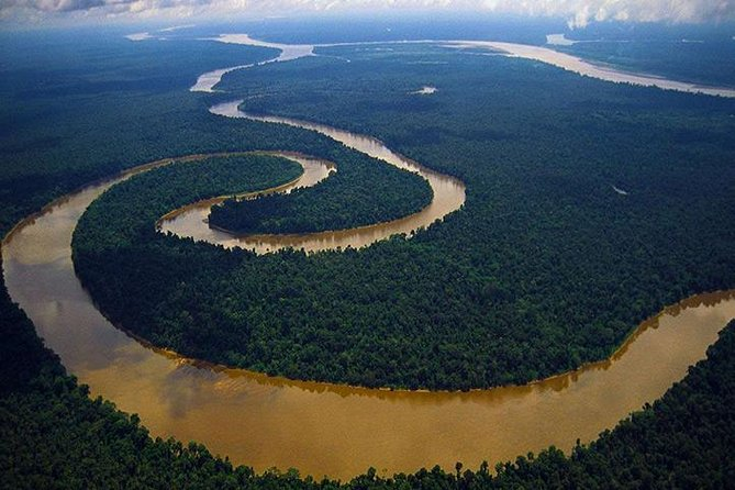 4-Day All Inclusive Private Guided Pacaya Samiria National Reserve from Iquitos