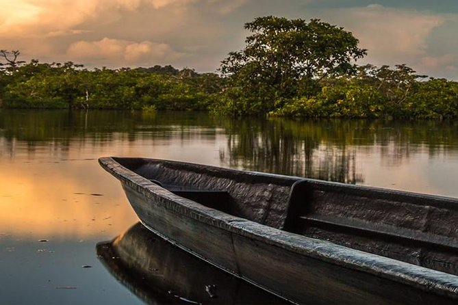 4-Day All Inclusive Guided Jungle Tour from Iquitos at Maniti Eco-Lodge