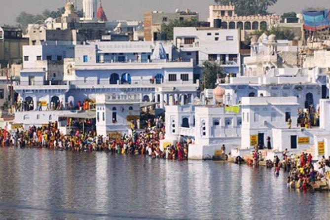 Same Day Pushkar Trip from Jaipur
