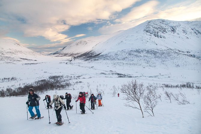 Snowshoe Hike on Whale Island in Tromso