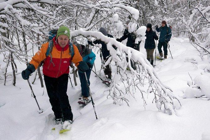 Tour Guidato a Piedi con Racchette da Neve sull'Isola di Tromsøya a Tromsø