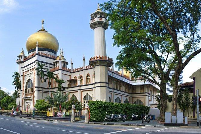 Shore Excursion: Private Singapore Melting Pot Discovery Tour