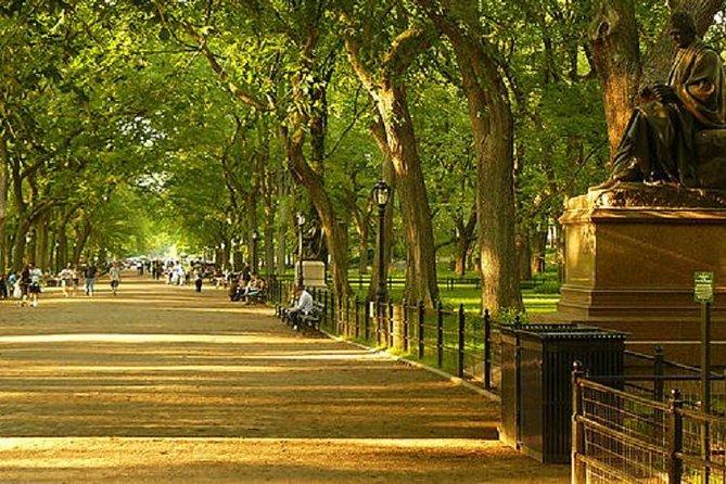 Guided Central Park Pedicab Tour