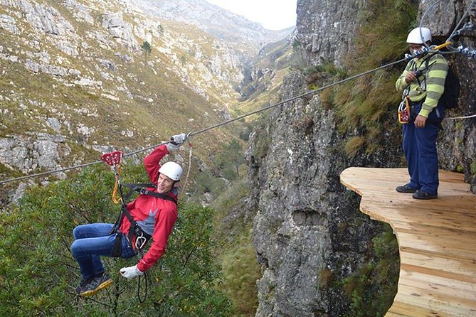 Zipline Canopy Day Tour