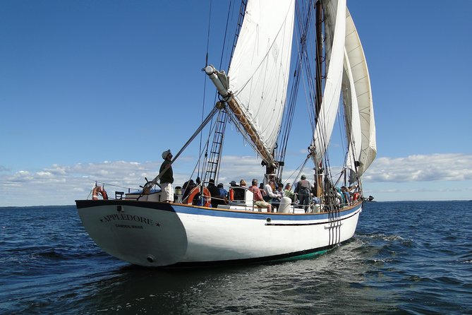 Windjammer Classic Day Sail
