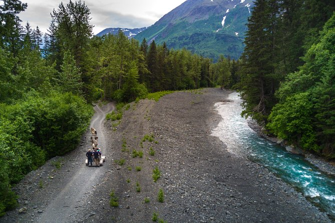 Seward and Kenai Fjords National Park Guided Tour with Lunch