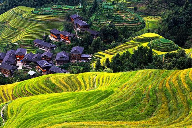 Private Day Tour Visiting Longji Rice Terrace with PingAn Zhuang Minority Village and Sanjie Liu Tea Plantation