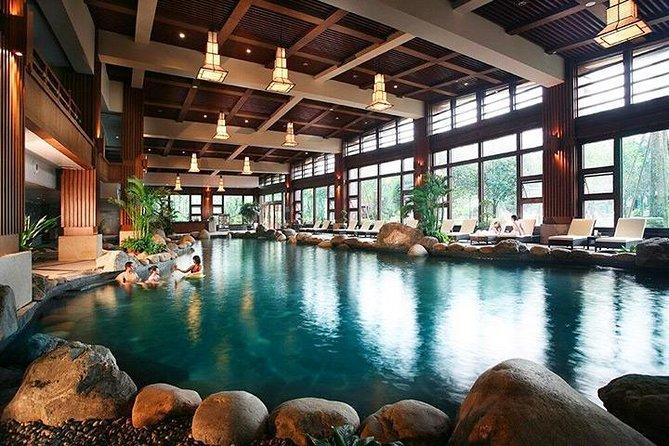 Tour privato di Chengdu della base del Panda di Dujiangyan e delle sorgenti termali di Qingcheng, incluso il pranzo