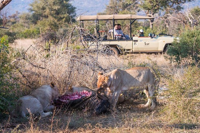 3days THAKADU RIVER CAMP, Madikwe Game Reserve