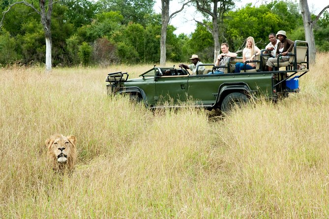 Nottens Bush Camp 4days Safari