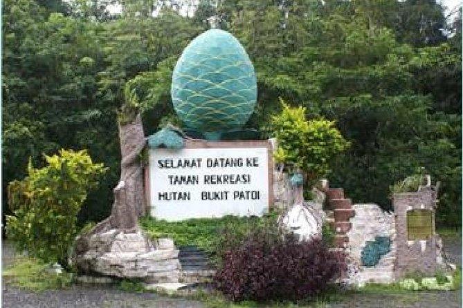 Full Day Nature Excursion to Bukit Patoi Temburong