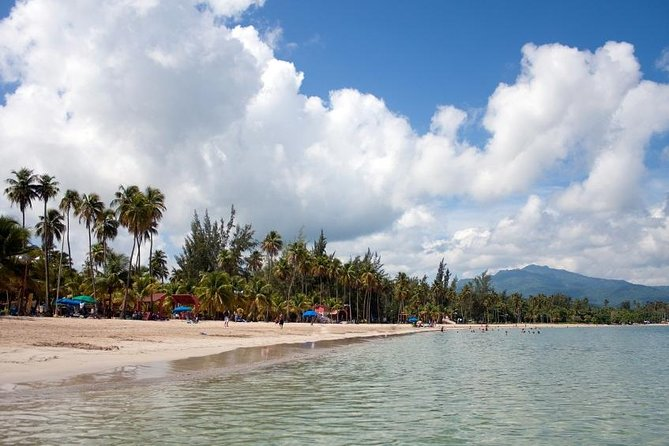 El Yunque Rainforest and Luquillo Beach Day Tour