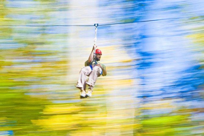 Ziplines & Aerial Challenge Combo Admission Ticket at Nashville West