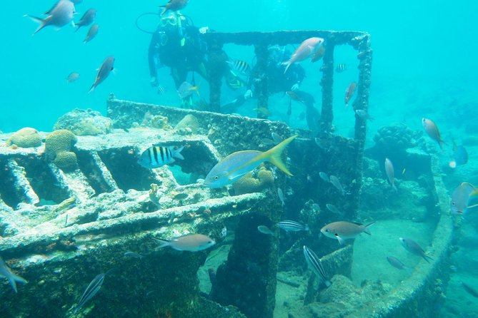 Discover Diving in Curacao