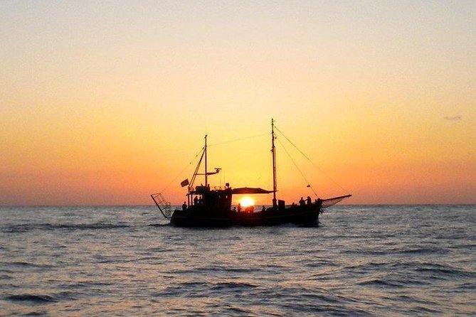 4-Hour Boat Trip by the Coastline in La Palma