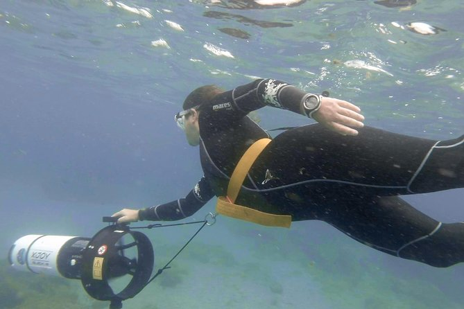 1-timers Power Snorkel Experience i Las Canteras