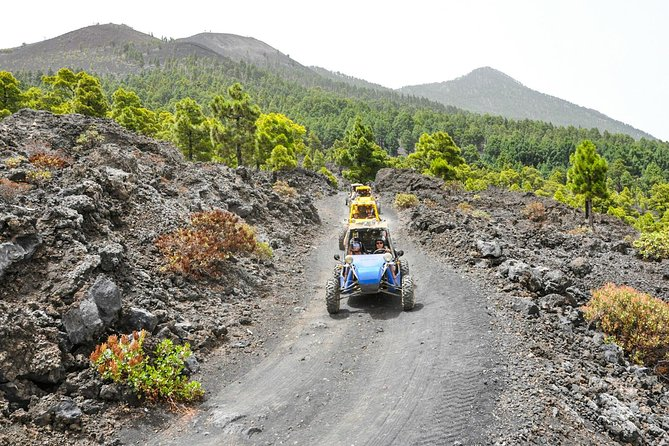 5-hour Buggy Route through the volcanoes of La Palma