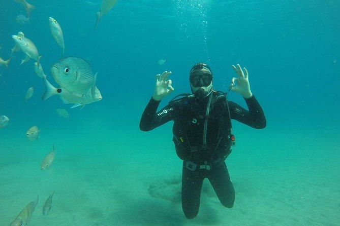 Scuba Diving Experience for Beginners in Playa de Puerto de Mogán