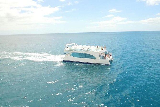 Luxury Catamaran Cruise from Pasito Blanco
