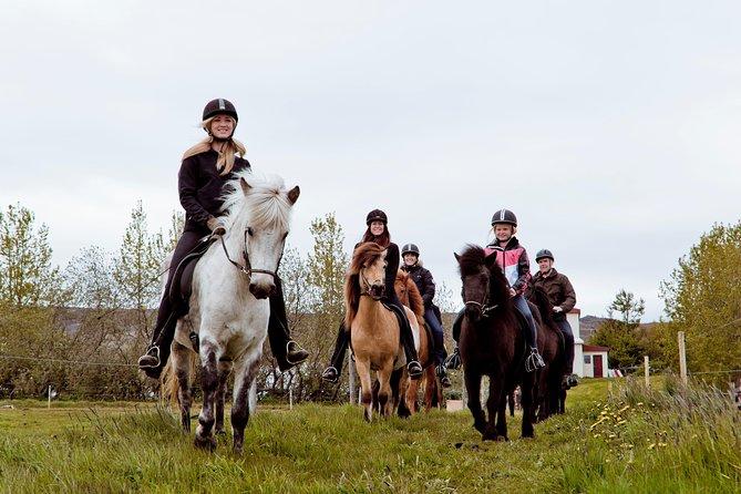 Tour de equitación en Akureyri