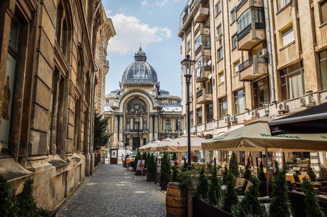 Wine tasting in Bucharest Old town - bonus cheese platter