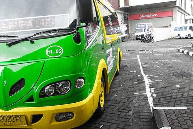 Bali 3-Day Kura-Kura Bus Pass