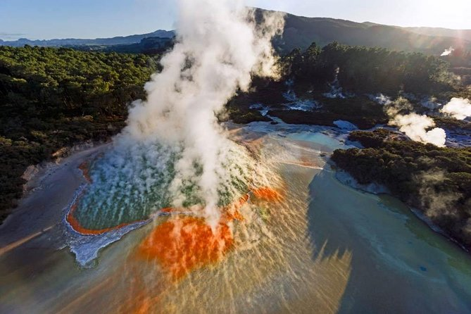 Rotorua Small Group Tour: Wai-O-Tapu, Lady Knox Geyser and Rainbow Springs
