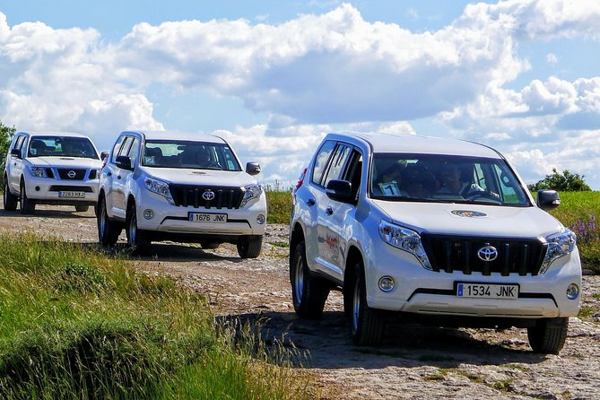 Pyrenees Safari for Families - Five Day of nature and adventure in 4x4 (SUV) car