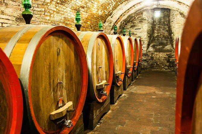 8-Hour Napa Valley Wine Tour
