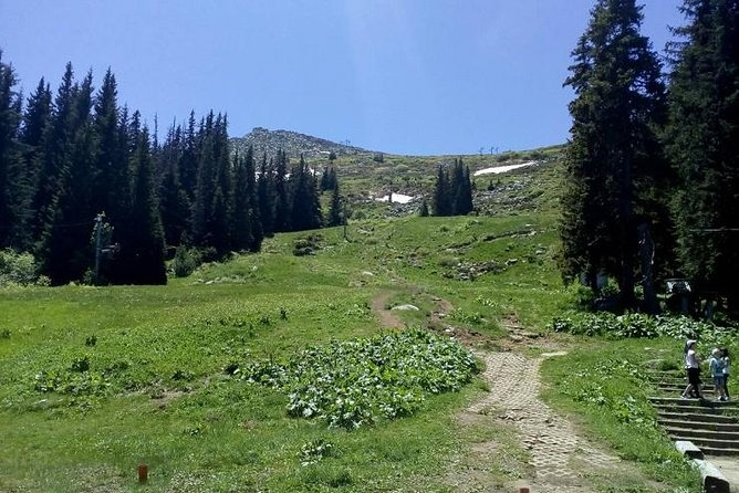 Private Hiking Trip to the Black Peak in Vitosha Mountain