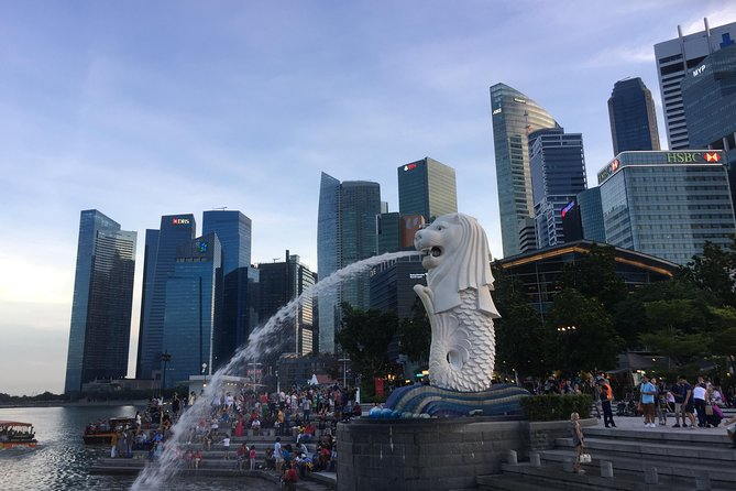 Singapore Half Day Private Tour