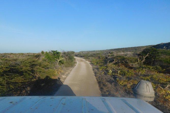 Excursion sur le rivage de Curaçao: visite culturelle du safari au coucher du soleil