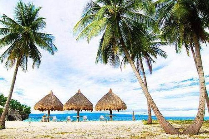 Ilha de Pamilacan e viagem de um dia à Ilha Balicasag saindo da cidade de Tagbilaran
