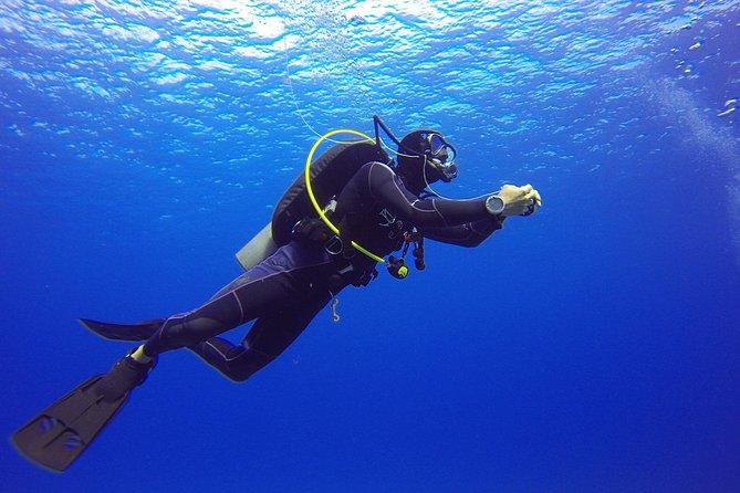 Suivez le cours Discover Scuba Diving en quelques heures