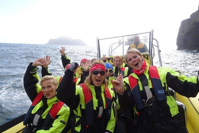 Excursión en barco de 1 h en grupo pequeño en Vestmannaeyjar