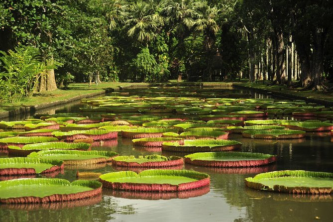 Historical Guided Private Tour, City-SugarWorld-Botanical Garden - Min.2 persons