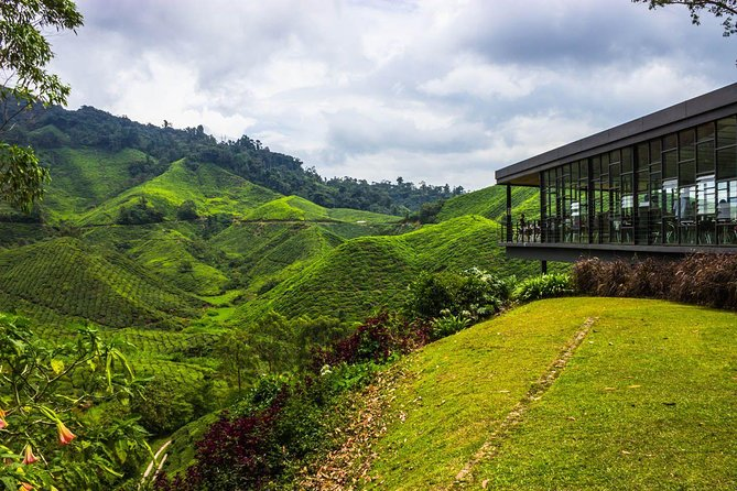 2D1N Cameron Highlands and Nature Tour with visit to Strawberry Park - Rose Garden - Tea Plantation