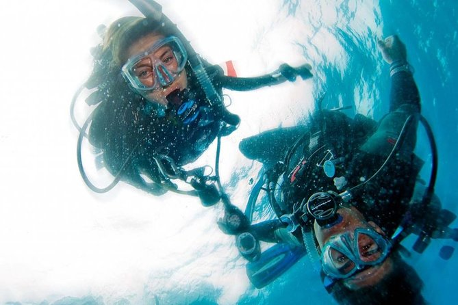 Try SCUBA Diving in Crystal River with Pool or Springs option