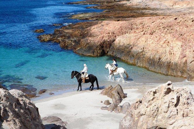 3-Day Atlantic Patagonia Wild Nature Experience at Bahia Bustamante Lodge