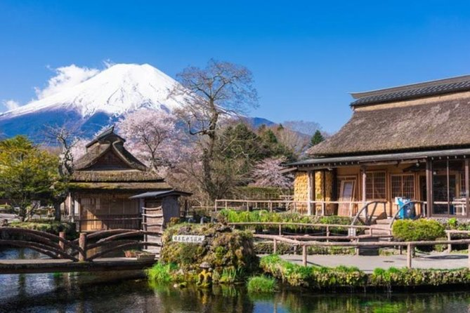 Mt Fuji 5th Station Tour Gotemba Outlet Shopping From Tokyo Japan Activities Lonely Planet