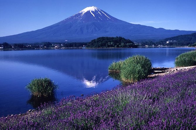 Mt. Fuji 5th Station, Lake Kawaguchi & Seasonal Fruits Picking from Tokyo photo 14