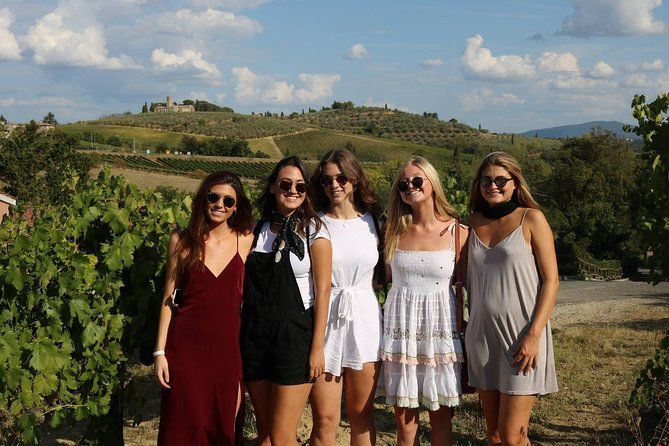 Half-day Wine Tasting Trip to Chianti with Guide from Florence
