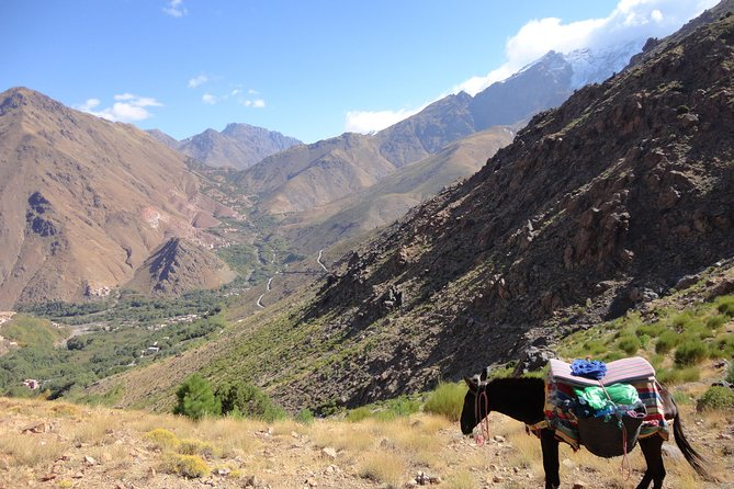High Atlas Mountain Private Guided Day Tour from Marrakech