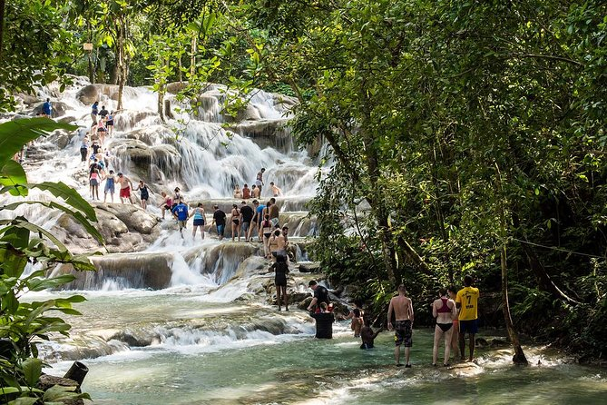 Private Blue Hole and Dunn's River Tour from Montego Bay