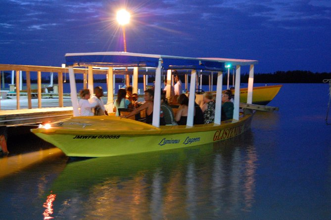 Luminous Lagoon Small Group Tour from Montego Bay