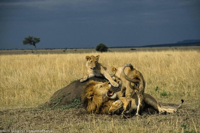 3-Days, 2-Nights Kenya Meru Tour